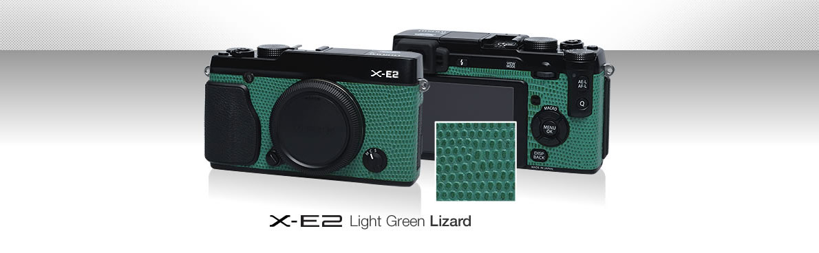 X-E2 Light Green Lizard