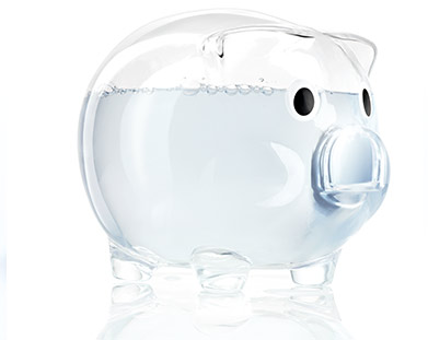 Bosch Water Piggy