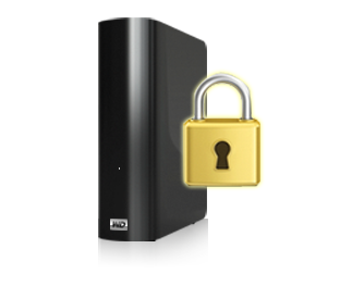 Password protection secures your drive